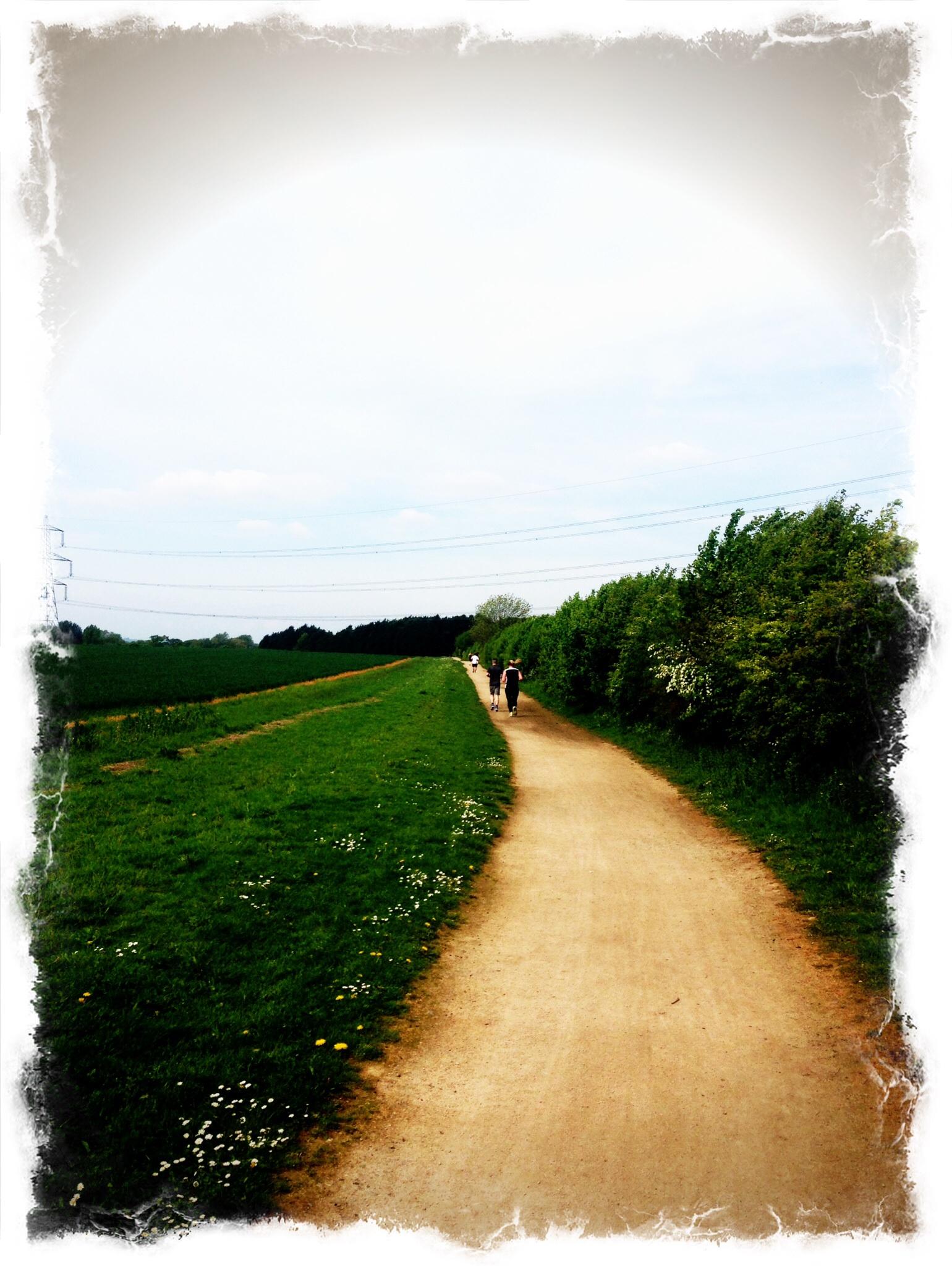 Race report: Letchworth Greenway Challenge Half Marathon
