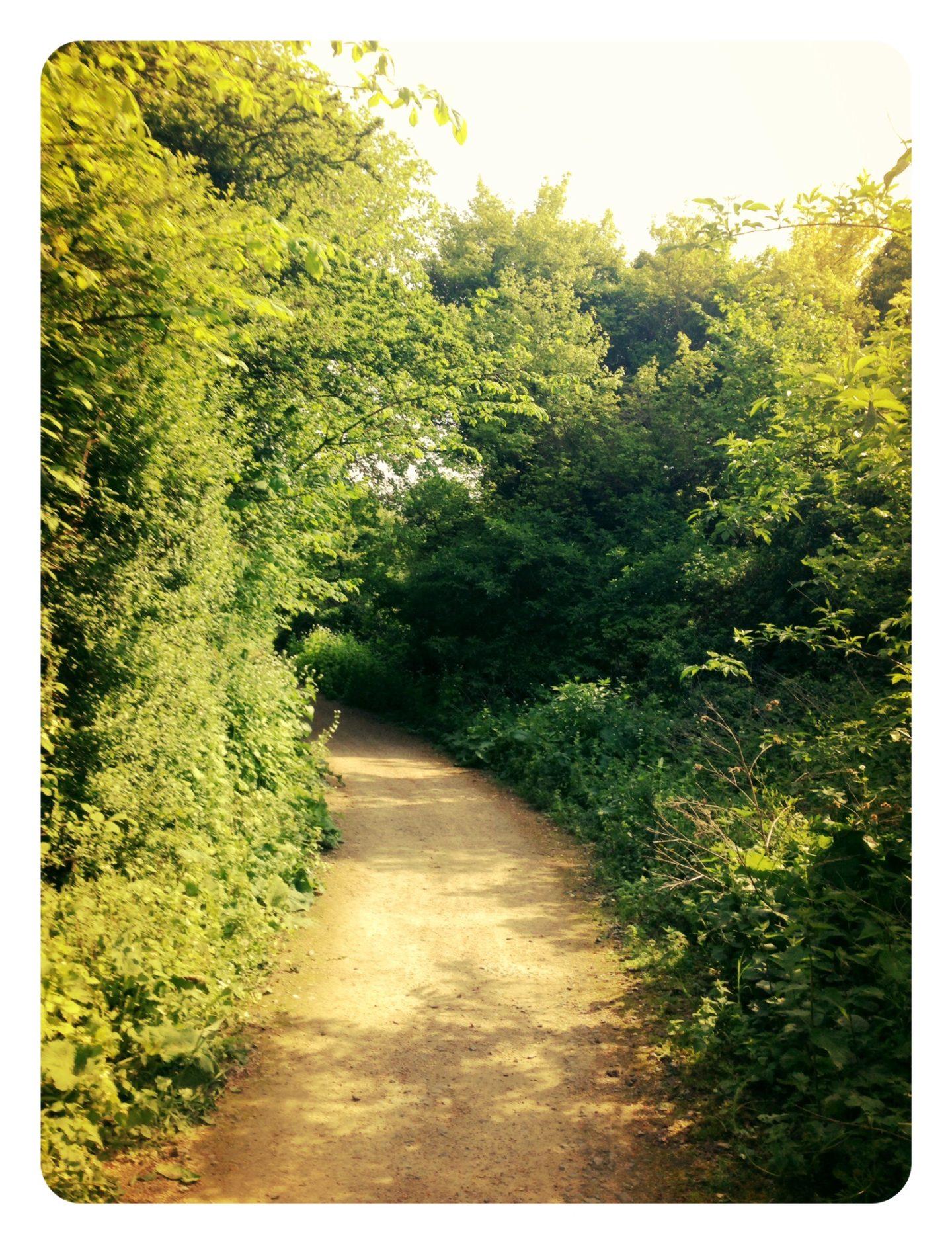 Letchworth Greenway