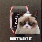 Grumpy Kat is Grumpy