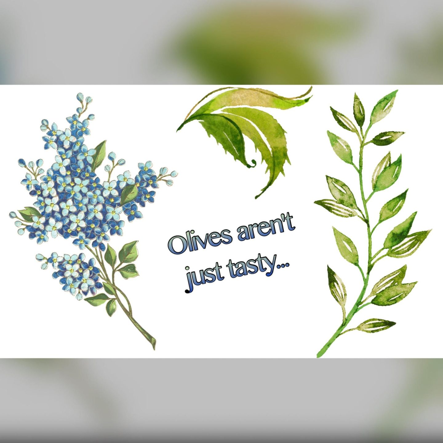 Image text - olives aren't just tasty